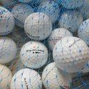 Lakeballs Pinnacle Mix  25er Netz Qualität AAA/AA